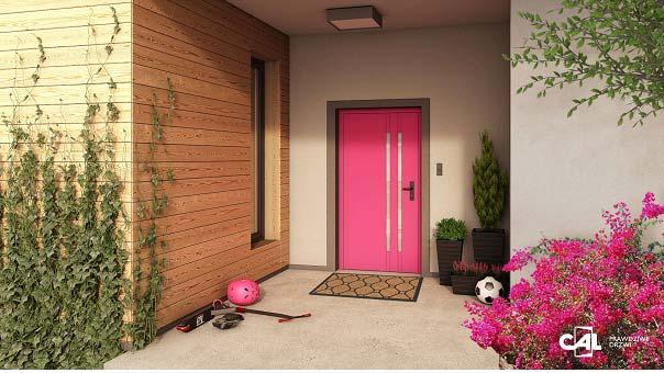 drzwi wejściowe CAL
