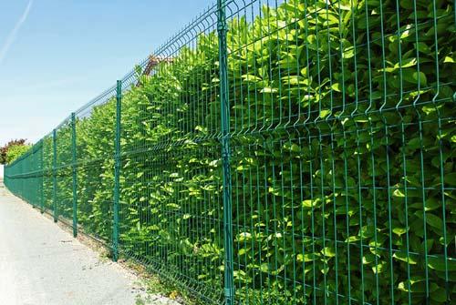 Rodzaje ogrodzeń panelowych – który z nich spisze się najlepiej